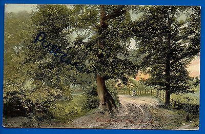 Old 1905 Postcard Gainsborough Lane Ipswich Suffolk Nr Woodbridge Felixstowe