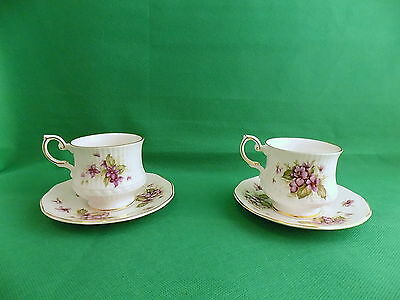 Queen's Violets Cups & Saucers x 2