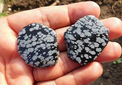 115.7 Cts Fab A+++ Marvelous Snowflake Obsidian Mix Lot Slice Loose Cabochon