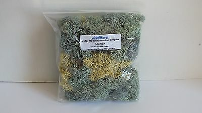 Good Economical Lichen for your HO/N Scale Layout Fall Color Mix (LNS3)