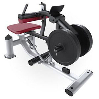 Used Fitness Equipment Calf Raise