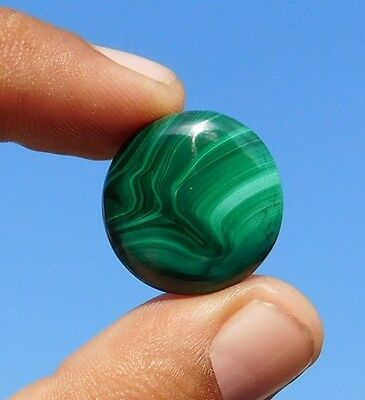 29.15 Cts 100% Natural Antique Green Malachite 22X22X5 Mm  Loose Cabochon