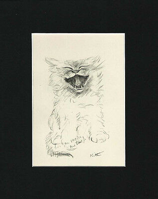 "Cat Kitten Sketch by Lucy Dawson 1946  8X10"" Matted Print LAUGHING"