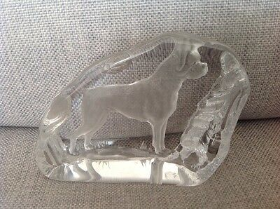 """Darlington crystal Paperweight etched """" Dog""""  by A Capredoni"""