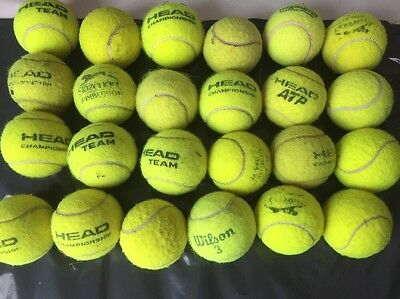 24 Used Tennis Balls For Dogs