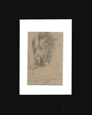 Vintage Chow Chow Dog  Print 1934  by Cecil Aldin 8x10 Double Mat  CUTE PUPPY