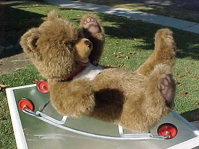 Steiff Rocking Teddy Bear On Wheels West Germany Excellent Condition