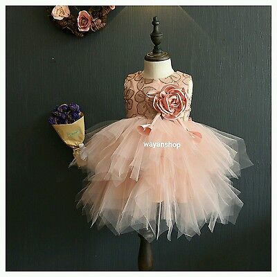 Baby Toddler Flower Girl Birthday Party Ball Gown Dress Tutu