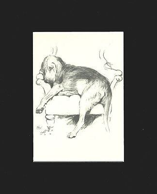 VINTAGE Bloodhound Dog 1939 Cute Print by Cecil Aldin  8 X 10