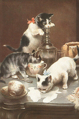 Cute Kitten Cats pre-1918 Drawing by Carl Reichert  8-LARGE New Note Cards