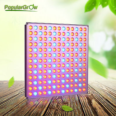 PopularGrow  Full Spectrum 45W LED Grow Light Panel For Indoor Plant Veg Bloom