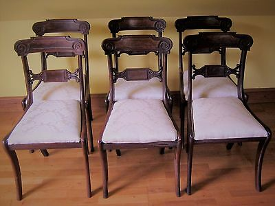 Set Of 6 Regency Mahogany Dining Chairs Chairs