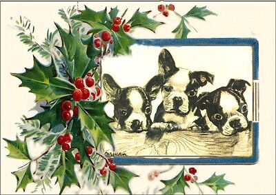 Boston Terrier Puppy Dogs 1800's by Curan LARGE New Christmas Note Cards #2