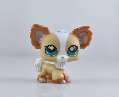 Littlest Pet CHIHUAHUA Dog Collection Child Girl Boy Figure Toy Loose LPS19