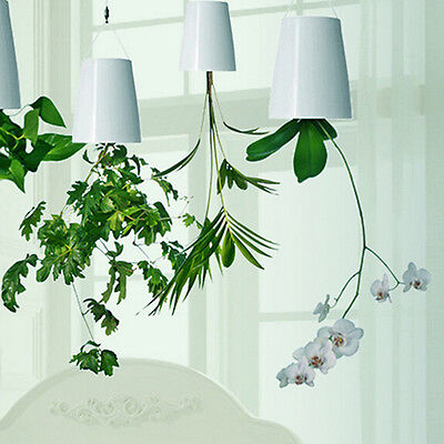 Hanging Upside-Down Sky Planter Indoor suspension Flower Pot Plant Holder Decor