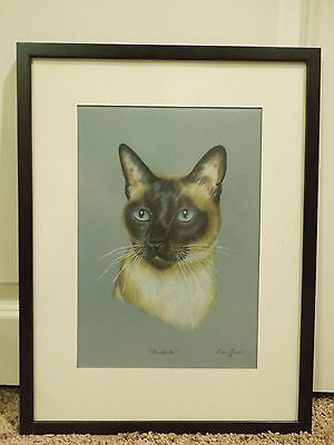 "Siamese Cat ""Merchante"" Pastel Art Drawing by Diane Bauer Framed"