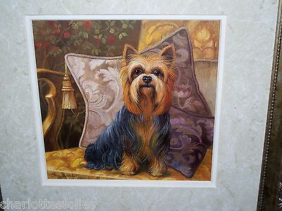 """YORKSHIRE TERRIER YORKIE DOG ART FRAMED SIGNED PRINT 12.5"""" SQUARE  ready to hang"""