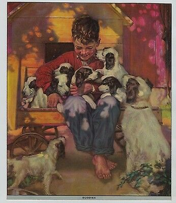1940's -50's Embossed Print Boy in Wagon w/ Black & White Mother dog & pups