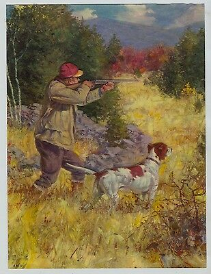 Vintage 1940's-50's Print Hunting over German Shorthair Pointer Dog on Point