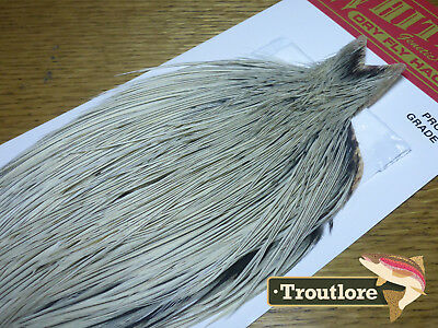 Whiting Farms Dry Fly Cape Grizzly Variant Whole New Pro Grade Fly Tying Neck