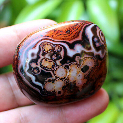 Z425 Natural Viewing Madagascar Agate Dream Colorful Crazy Texture Lace,Polished