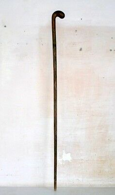 Old Antique India Rare Rose Wood Hand Carved  Old Man Woman Walking Stick