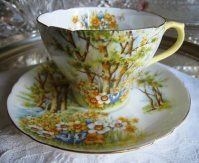 Shelley Fine Bone China.. Daffodil Time New Cam. One Teacup And Saucer..england