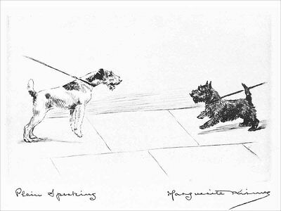 Scottish & Airedale Terrier Dogs 1924 by M. Kirmse  8 LARGE New Blank Note Cards