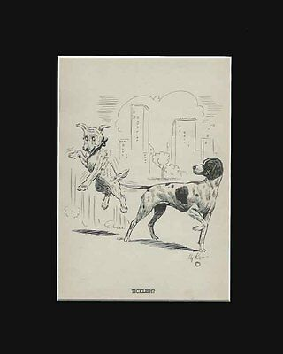 Vintage Pointer Dog Tickles Terrier.  Funny Print by Hy Ken 1938 8X10 Mat