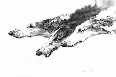 Borzoi Wolfhound Dogs by Maud Earl 1906  ~ 8 LARGE New Blank Note Cards