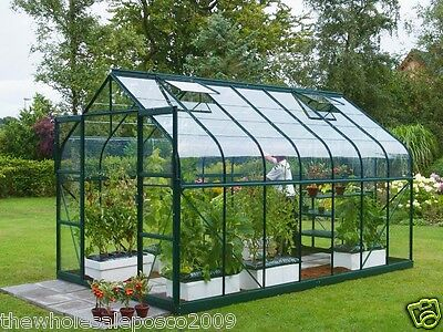 Replacement Plastic Acrylic Perspex Shed Window Greenhouse Summer House Glazing