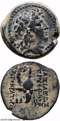 Ancient Greek Coin Seleucia Antioch Tryphon 142-138 Bc