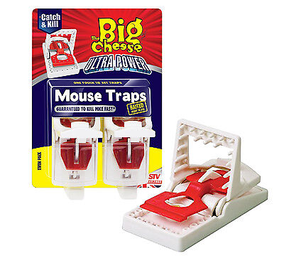 Mouse Traps Baited Easy to Set Rodent Pest Traps The Big Cheese - Pack of 2