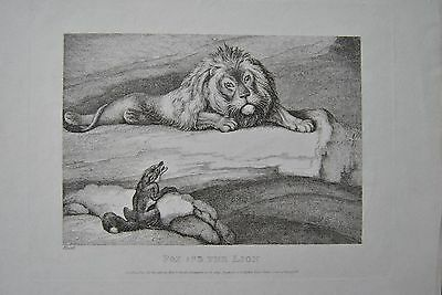 Samuel Howitt Fuchs & Löwe Kupferstich 1810 Fox and the Lion