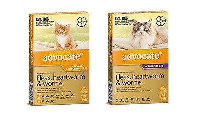 Advocate Fleas Worms and Heartworm Treatment For Cats 1, 3 & 6 Pack