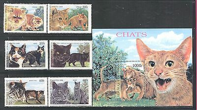 Domestic Cats, Felines On Congo 1999, Mnh