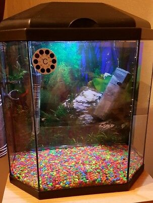 Ciano Aqua Hexagonal 25 litre aquarium fish tank