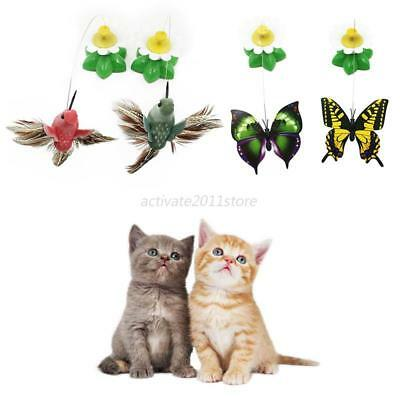 Electric Rotating  Dog Cat Toys Flower Butterfly Birds Steel Wire Teaser Pet AU
