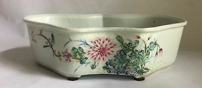 Antique Chinese Famille Rose Porcelain Narcissus Pot Dish Signed