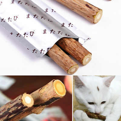 Cat Snacks Matatabi Chew Catnip Stick Teeth Molar Cleaning Brush Toy For Pet