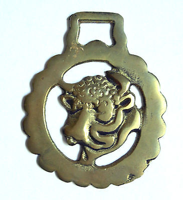 Bull's Head Horse Brass Bridle Saddle Medallion Decor British Equine