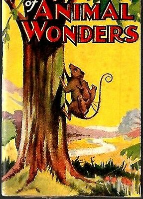 D,c.thompson 1930's Skipper Comic Mini Book Broadway Of Aniaml Wonders Vg