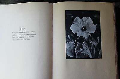 Vintage Pictures Of Paradise Moods & Moments In Hawaii Don Blanding Warren 1937