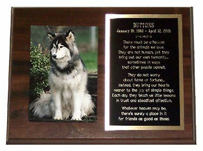 Beautiful Personalized Pet Memorial Photo Frame Plaque - Thoughtful Gift !