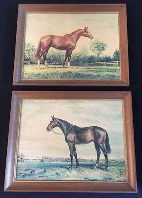 2 Vintage 1960's Framed HORSE Prints SAVITT by Wedgefield Pictures
