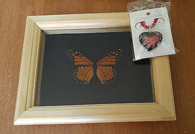 Butterfly monarch framed gift necklace