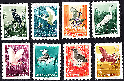Hungary 1959 Mint Water Birds Complete Set MNH