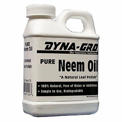 Dyna-Gro Pure Neem Oil Natural Leaf Polish, 8 Ounces