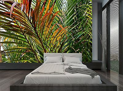 Tropical Palm Leaves Rainforest Wall Mural Photo Wallpaper Giant Decor