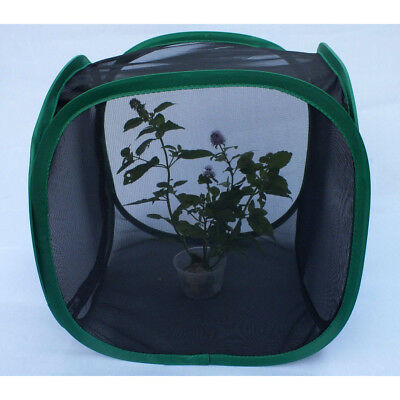 Praying mantis Stick Insect Leaf Insect butterfly chameleon pop up Cage Black